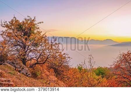 Surprisingly Beautiful Landscape With Trees In A Mountainous Area With Floating Clouds Over The Moun