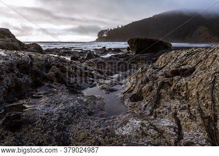 Rocky Shore And Cape Sebastian