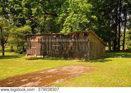 Shed For Firewood In The Shade Of Trees