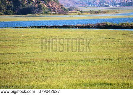 Lush Green Grasslands Besides An Estuary Surrounded By Bluffs Taken On Wetlands At The Newport Back