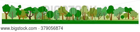 Morning Forest. Vector. Background Picture. Horizontally. Dawn Of The Sun In The Forest. Symbolic Ca