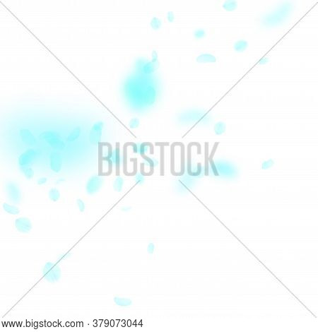 Turquoise Flower Petals Falling Down. Mesmeric Romantic Flowers Corner. Flying Petal On White Square