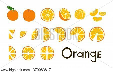 Citrus Fruit. Oranges. Orange Whole And Cut, Half And Slices. Vitamin C. Set Of Positive Modern Vect