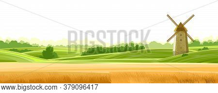 Wheat Field Landskape. Isolated Vector On A White Background. Green Grassy Hills. Windmill For Grind