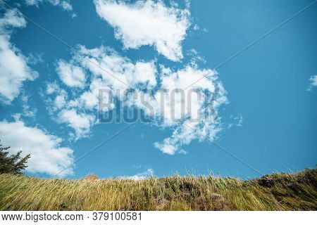 Blue Sky Over A Plain With Dry Grass In The Summer Reaching For The Sky