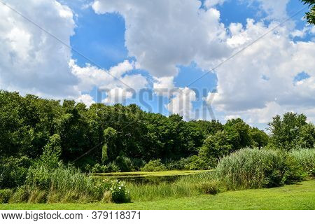 Meadow Landscape With Pond And Puffy Clouds