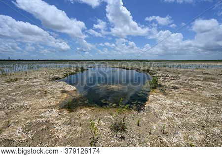 Solution Hole In Hole-in-the-donut Restoration Project Area In Everglades National Park, Florida Und