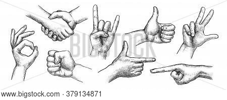 Hand Gestures Set. Isolated Flat Hand Drawn Human Finger Symbol Icon Collection. Handshake, Thumb Up