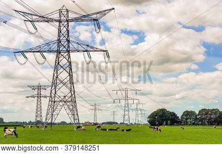 Tall Electricity Pylons Contrasting With Small Cows Grazing On A Meadow In A Dutch Landscape. The Ph