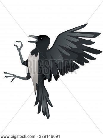 Predatory Bird Adult Black And Gray Crow Cartoon Animal Design Birds Of Prey Character Flat Vector I