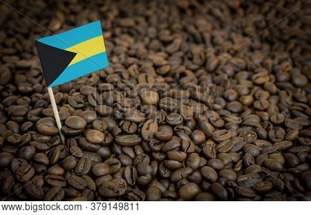 Bahamas Flag Sticking In Roasted Coffee Beans. The Concept Of Export And Import Of Coffee