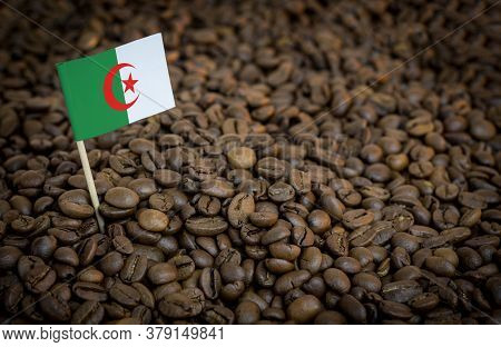 Algeria Flag Sticking In Roasted Coffee Beans. The Concept Of Export And Import Of Coffee