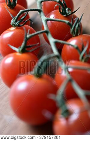 Fresh And Ripe Organic Red Cherry Tomatoes On The Vine, Close Up Under Natural Light