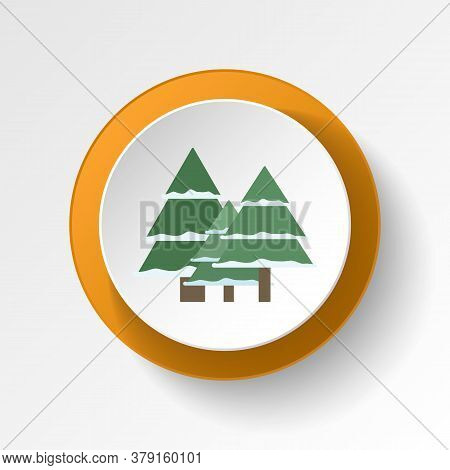 Pine Tree Winter Color Icon. Elements Of Winter Wonderland Multi Colored Icons. Premium Quality Grap