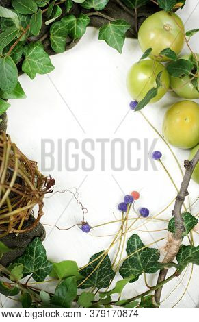 White notepad sheet, ivy branch and feathers.  Green tomato