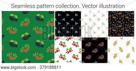 Fruit And Berry Seamless Pattern Set. Chokeberry, Red Mountain Ash, Lingonberry, Blueberry, Strawber