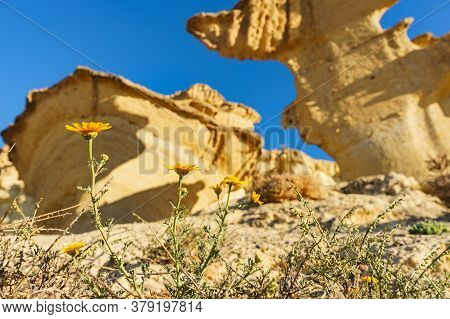 Tourist Attraction In Region Of Murcia, Spain. Enchanted City Of Bolnuevo, Natural Yellow Sandstone