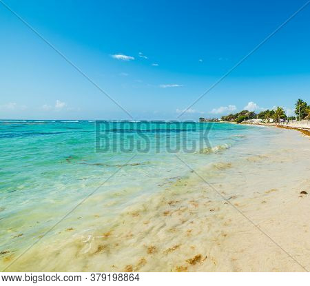Turquoise Sea And Blue Sky  In Raisins Clairs Beach In Guadeloupe, French West Indies. Lesser Antill