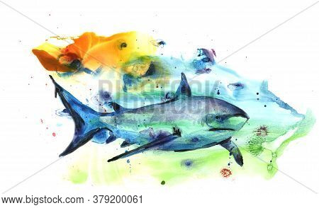 Watercolor Drawing Of A Predatory Shark Against The Background Of Water And Algae. For Use In Design