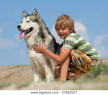 Boy hugging a fluffy dog. Husky dog breed poster