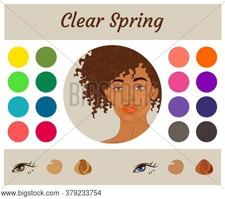 Stock Vector Seasonal Color Analysis Palette For Clear Spring. Best Colors For Clear Spring Type Of