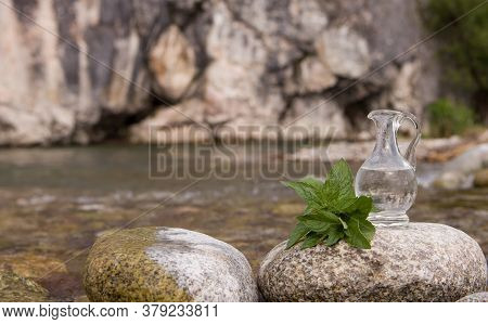 Essential Oil And Mint - Natural Ayurveda