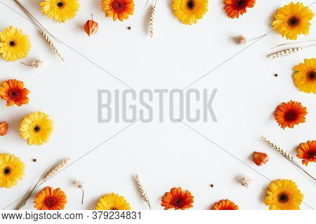 Autumn Composition. Gerbera Flowers, Spica Ears On White Background. Autumn, Fall Concept. Flat Lay,