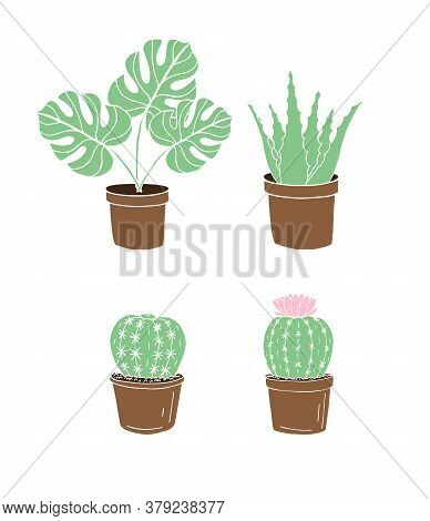 Vector Set Bundle Of Colored Hand Drawn Doodle Sketch Monstera Plant And Cactus In Pots Isolated On
