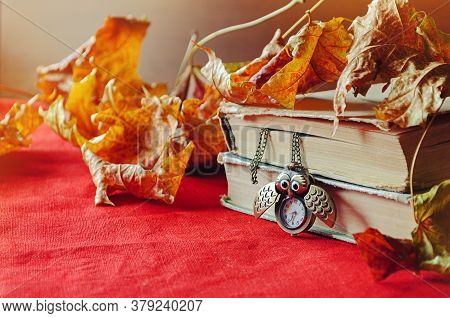 Old books with vintage clock in form of owl among yellow maple leaves and bright natural sunlight -autumn still life. Autumn background, Back to school concept. Stack of old books on the table among the dry yellow maple autumn leaves,Back to school design