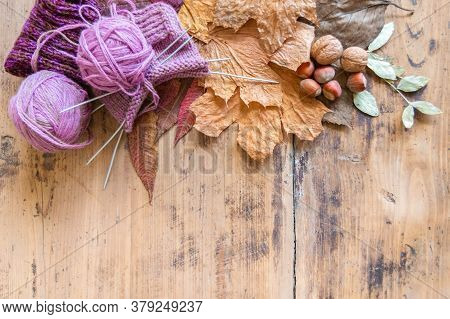Knitted Sock, Ball Of Yarn And Knitting Needles On Rustic Table. Wool Knitting, Leaves And Nuts On V
