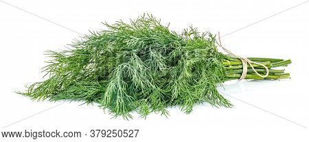 Lying Bunch Of Dill Tied With Brown Twine Isolated On White Background