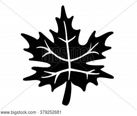 Maple Leaf - Black Vector Silhouette For Pictogram Or Logo. Maple Leaf Silhouette - Sign Or Icon.