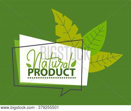 Natural Product. Organic Poster Or Banner. Eco Friendly Concept. Sticker, Logo, Label With Green Lea