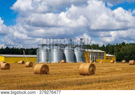 Agro Manufacturing Plant For Processing Drying Cleaning And Storage Of Agricultural Products, Flour,