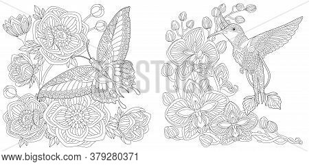 Coloring Pages. Butterfly And Peony Flowers. Hummingbird And Orchid Flower. Line Art Design For Adul