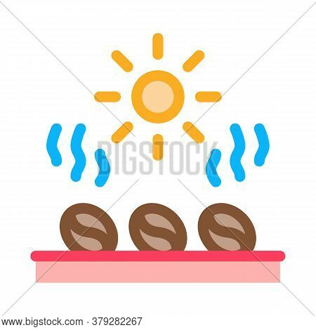 Coffee Beans Heating Icon Vector. Coffee Beans Heating Sign. Color Symbol Illustration