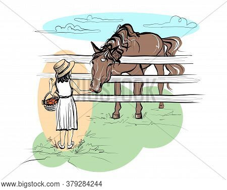A Little Girl Feeds A Horse Carrots. Illustration Of A Sketch In A Realistic Style. Vector.