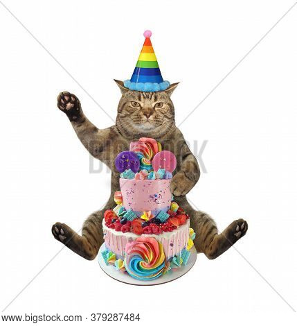 The Beige Cat In A Birthday Hat Is Sitting Near A Two Tiered Cake. White Background. Isolated.