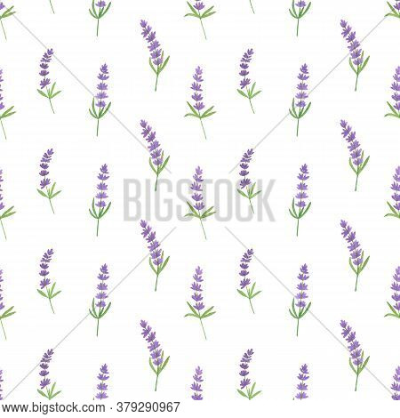 Repeat Pattern Of Watercolor Hand Drawn Lavender Flowers And French Bun Croissant, Simple Seamless R