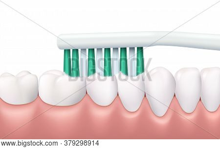Teeth And Gums Brushing, 3d Vector Tooth Brush Cleaning White Healthy Teeth. Realistic Stomatologica