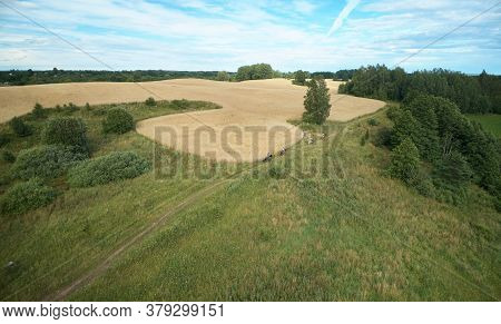 Horse Ride Activity On Natural Background Aerial Drone View