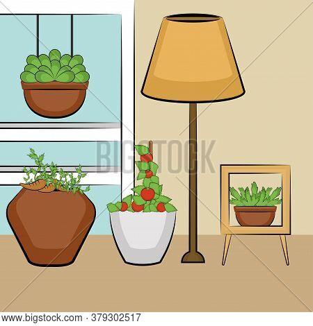 Urban Farming. Urban Gardening. Organic Food And Garden - Vector