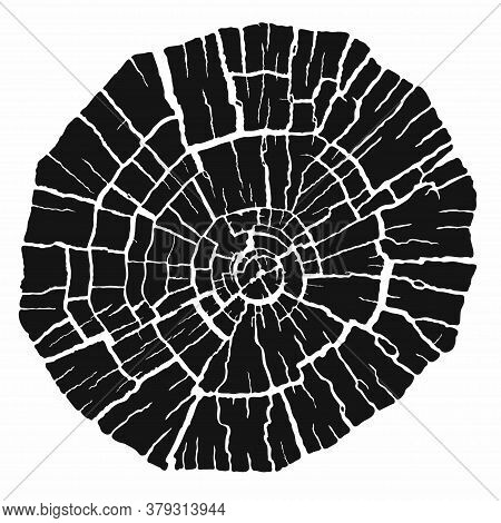 Black Stamp Of Wood Texture. Tree Rings From A Slice Of Log. Dry Cracked Wood Rings, Isolated On Whi