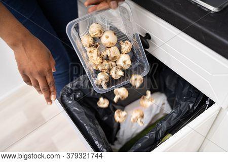 African Woman Throwing Away Food In Rubbish Bin