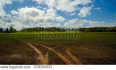Spring In The Fields Of Latvia On A Sunny Day. In The Foreground, Tractor Tracks Are Visible In An A