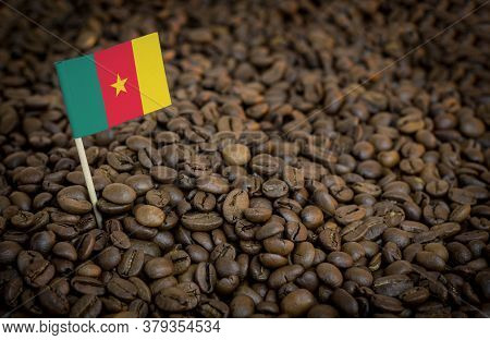 Cameroon Flag Sticking In Roasted Coffee Beans. The Concept Of Export And Import Of Coffee