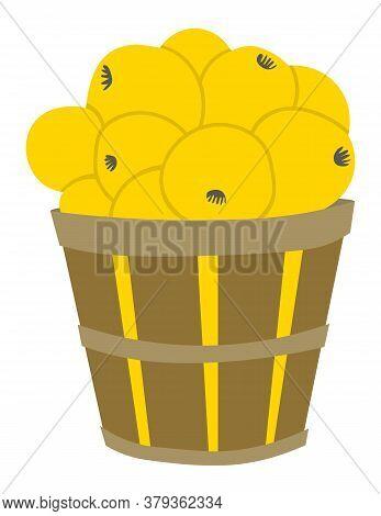 Full Basket Of Picking Apples, Yellow Fruit In Wooden Pottle. Element Of Harvesting Work, Fresh Prod