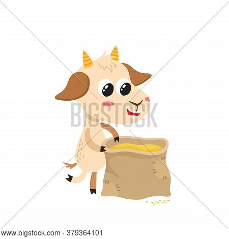 Farmer Goat Andbag With Grains Isolated On White.