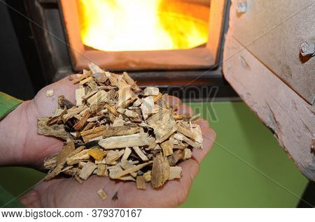 Holding Wood Chips In Hands, Burning Fire In Oven In The Back, Heating With Wood Chips At Home