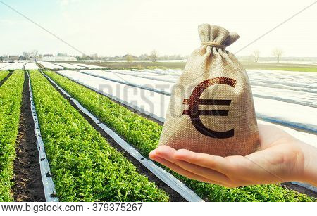 A Hand Holds Out A Euro Money Bag On A Background Of Potato Plantation Farm Fields. Lending Farmers